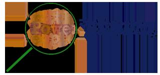 Stellenbosch Transparency logo